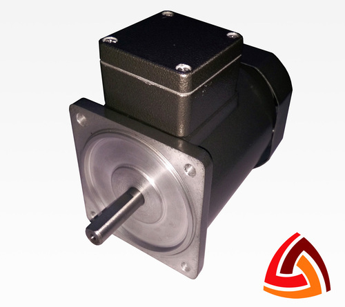 60 Watt Induction Motor